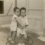 僕と兄貴(昭和29年7月)